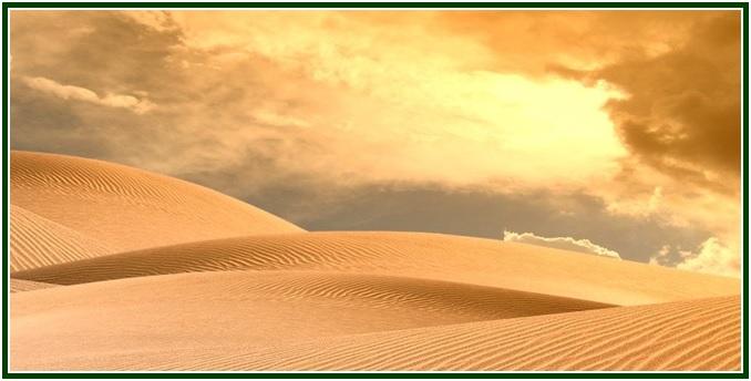 pregar-no-deserto-com-mold