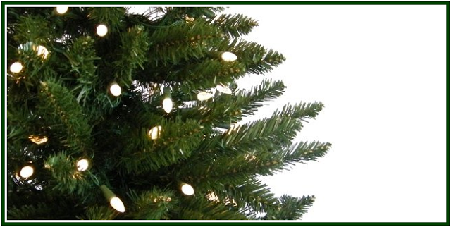 the origin of the christmas tree - Origin Of Christmas Tree